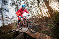 Mountain biker crossing wooden bridge in a forest, Bavaria, Germany