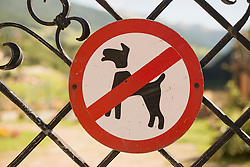 No dogs allowed sign on gate, Carinthia, Austria