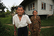 August 2012: Penan indigenous natives, Banai Tebai and his wife Sigangsey, are now living in a government built hut. The Penan natives moved in and set up their community there, when municipal workers vacated the outpost. Long Adang, Belaga district, Sarawak, Borneo<br /> <br /> The sound of chainsaws is not too distant, oil palm plantations are looming and the pipeline is right next door. Long Adang and Long Gita, Limbang Sarawak, Borneo..The huge Petronas Sabah-Sarawak pipeline is being built across the Borneo rainforest through native areas. Petronas is the government cash cow which funds about 45% of its budget. New roads are being built, though much of the transport follows the existing roads and infrastructure created by logging. Whilst the government heralds the project as a source of jobs for local people, it is unlikely to bring much but wanton damage to rainforest habitat and paving the way for further deforestation by oil palm plantations. Sarawak's primary rainforests have been systematically logged over decades, threatening the sustainable lifestyle of its indigenous peoples who relied on nomadic hunter-gathering and rotational slash & burn cultivation of small areas of forest to survive. Now only a few areas of pristine rainforest remain; for the Dayaks and Penan this spells disaster, a rapidly disappearing way of life, forced re-settlement, many becoming wage-slaves. Large and medium size tree trunks have been sawn down and dragged out by bulldozers, leaving destruction in their midst, and for the most part a primary rainforest ecosystem beyond repair. Nowadays palm oil plantations and hydro-electric dam projects cover hundreds of thousands of hectares of what was the world's oldest rainforest ecosystem which had some of the highest rates of flora and fauna endemism, species found there and nowhere else on Earth