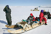 (MODEL RELEASED IMAGE). Emil Madsen stops to look for prey (seals, polar bears, musk ox, and geese) while the dogs take the moment to rest. Here he is looking for seals near the ice edge (a giant iceberg is in the open water in the background) The family has been traveling by dogsled for a good portion of the day. When the snow crust is hard enough to ensure that the dogs won't break through, they can pull the half-ton weight of the sled for hours on end. On level ground, the animals pull at about the pace of a running human, but the sleds can whip down hills so fast that drivers must step on the brake at the rear of the sled to avoid running over their dogs. (Supporting image from the project Hungry Planet: What the World Eats.)