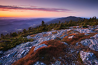 Sunset along the Long Trail on top of Mount Abraham, central Green Mountains, VT.