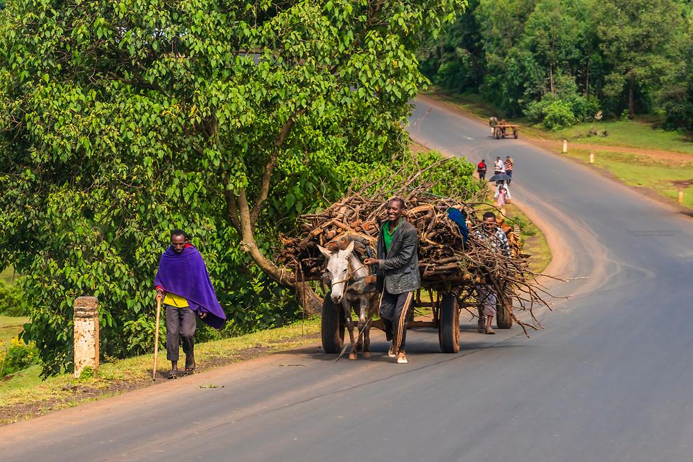People walking to market, Amhara region, Ethiopia.