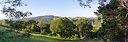 Panoramic view of the Wilson River Valley, near Federal, NSW, Australia.