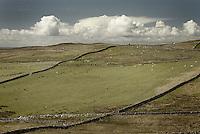 Fields on the Stoer Peninsula Scotland