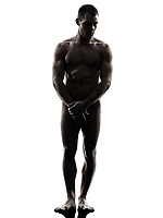 one  handsome naked muscular man standing full length in silhouette studio on white background