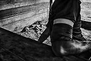 French guiana, ipoussing.<br /> <br /> Exploitation aurifere. Garimpeiro. Les favelas de certaines villes bresiliennes (Macapa, Belem ou Manaus entre autre) constituent un reservoir de main d'oeuvre peu exigeante de ses conditions de travail pour les chantiers guyanais. Les hommes sont payes au pourcentage et peuvent passer plusieurs mois sans sortir de foret. Ils sont rompus a ce mode de vie et travaillent indifferement pour des employeurs officiels ou clandestins.
