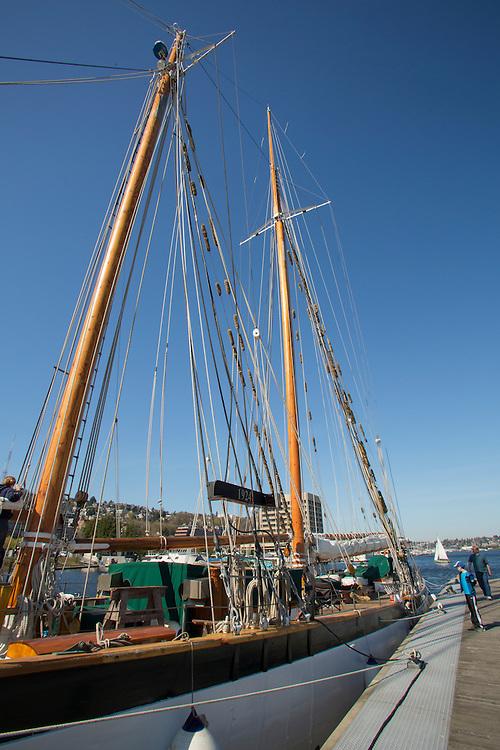 North America, United States, Washington, Seattle, Lake Union, Lake Union Park and Zodiac sailing schooner