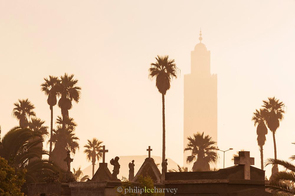 Palm trees at Christian cemetery in Casablanca, Morocco.The Cimetière el-Hank.