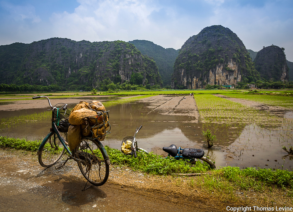 Bicycles are very common to find on the side of a rice field. It's planting season but it rained recently.
