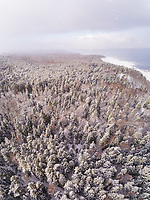 Aerial view of the snowy colorful forest on the coast of Muraste in Estonia.