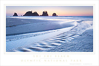 Shi Shi Beach Olympic National Park