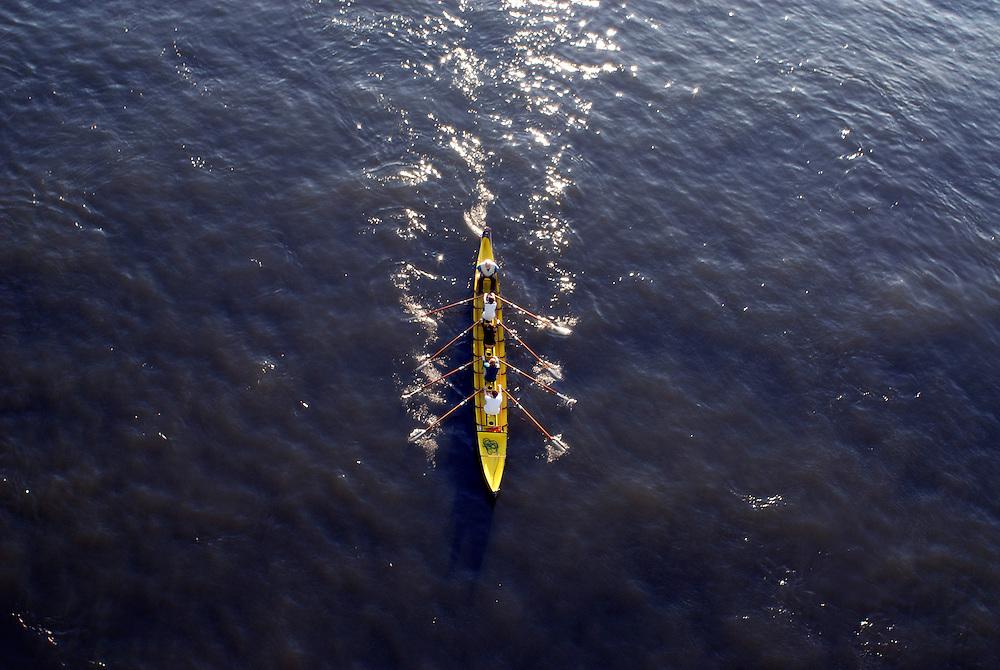 Deutschland, NRW, Köln, Ruderboot vierer mit Steuermann auf dem Rhein   Germany Cologne, row boat on the river Rhine