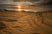 Sunrise over sand dunes on Agilos Kopa, Nagliai Nature Reserve, Curonian Spit, Lithuania.<br /> Mission: Curonian Spit, Lithuania, June 2009.