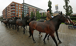 © Licensed to London News Pictures. 14/09/2013. Fifty horses from the King's Troop The Royal Artillery have paraded down to the Firepower, the Royal Artillery museum, at the Royal Arsenal in Woolwich.  Credit : Rob Powell/LNP