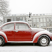 Nederland Rotterdam 21 december 2007 .. Lelijke een in de sneeuw op het Noordereiland..Foto David Rozing