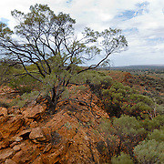 Desert in Northern Territory.