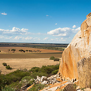 Dry landscape of Terrick Terrick National Park in Northern rural Victoria