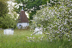 Spring blossom and beehives in the Orchard Meadow at Sissinghurst Castle Garden. Gazebo in the distance