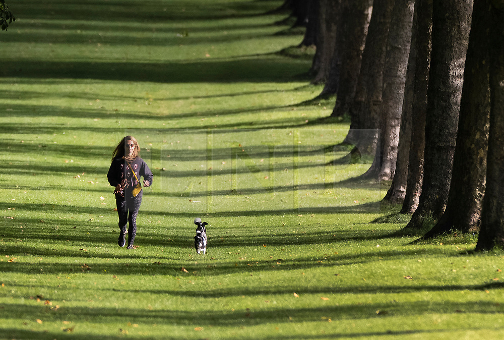 © Licensed to London News Pictures. 01/09/2021. Windsor, UK. A woman walks with her dogs on the Long Walk near Windsor Castle as the sun breaks through the early morning cloud. Today is the first day of meteorological autumn. Photo credit: Peter Macdiarmid/LNP