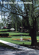 Messiah College Campus, Spring Flowers and Fountain, Grantham, Cumberland Co., PA