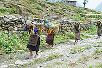 Nepal. Vallee de l Arun. Region Est du Nepal. Porteur, les routiers de l Himalaya. Ethnie Sherpa ou Bhote. // Nepal. Arun valley, East Nepal. Porter, the road rider of the Himalaya. Sherpa or Bhote ethnic group.