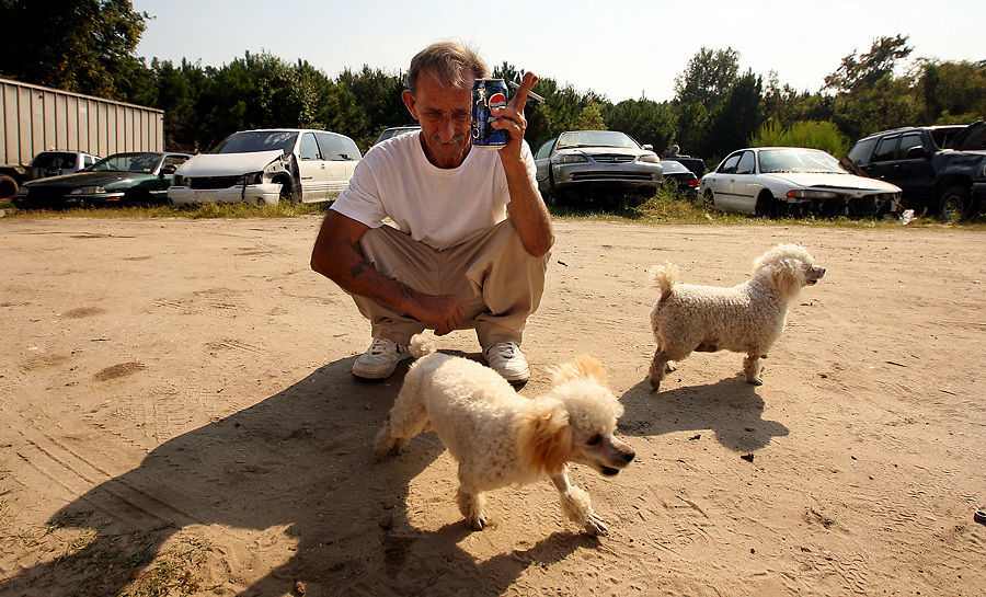 Pop meets his new friends, Lily and Daisy, at the junk yard where he will be living and working.