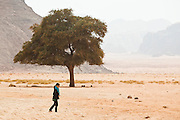 Yoesun Lim walks alone past a tree in the desert near Lawrence's Spring in Wadi Rum, Jordan.