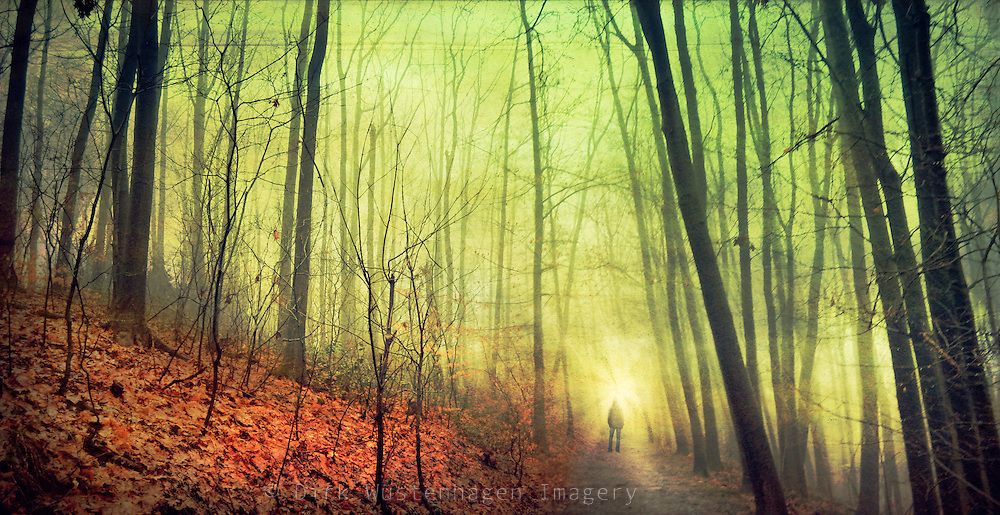 Man standing on a forest path on a foggy winter day.<br /> Textured photo.<br /> <br /> Prints, iPhoneCases / iPad.LapTop-Skins & more: http://society6.com/DirkWuestenhagenImagery/no-standstill_Print
