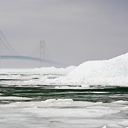 The Mackinac Bridge With No End In Sight As A Resident Bald Eagle Searches For Dinner