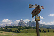 Hiking trails signposts on the Alpe di Siusi (German: Seiser Alm) plateau, above the South Tyrolean town of Ortisei-Sankt Ulrich in the Dolomites, Italy. Walking along one of the dozens of paths, hikers enjoy panoramic views of the peaks that envelope the location.  The Alpe di Siusi is the biggest high-alpine pasture in Europe with a surface of 57 km² and its altitude range from 1680 to 2350 m above sea level. This high-alpine pasture is located in the heart of the Dolomites surrounded by the Sasso Lungo Mountain Group, the Sciliar Nature Park, and the Catinaccio Mountain Group, the Northern Alps and the Sciliar Mountain Massif with Santner Peak.