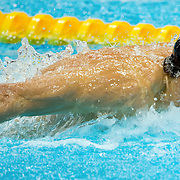 Michael Phelps won gold in the men's 100m butterfly with a time of 51.21 at the Aquatics Center during the 2012 Summer Olympic Games in London, England, Friday, August 3, 2012. The medal was Phelps' 17th career gold medal. (David Eulitt/Kansas City Star/MCT)