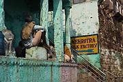 Kleurrijke gebouwen in Varanasi, stad aan de heilige Ganges rivier