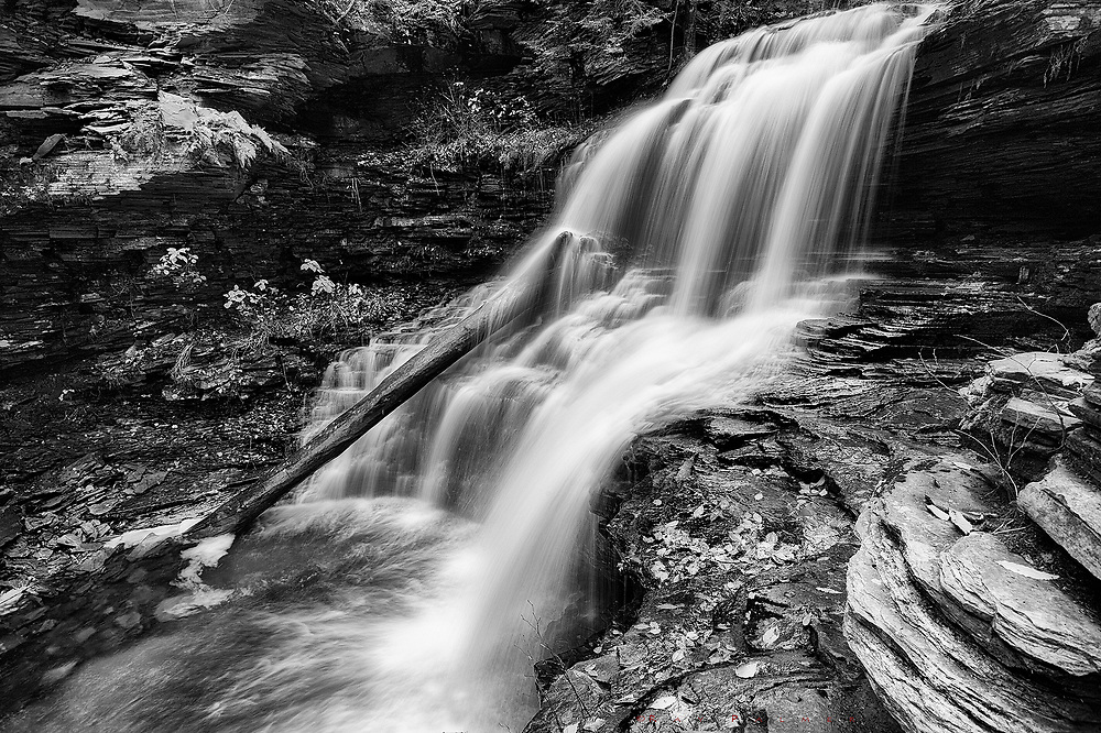 Shawnee Falls, Ricketts Glen, PA.<br /> It is late afternoon, partway down the loop of Kitchen Creek.  The trail is muddy, the rock treacherous underfoot, because it has been raining on and off all day.  The autumn air is cool and damp, making for stiff fingers and aching bones.  A great mane of water pours over shoulders of stone, in a little ampitheater of shale and limestone, layered like pieces of Jenga in precarious stages of collapse.  The world is more vertical here, and falling is just a matter of time.  We think we are on solid ground, only to find ourselves undermined and toppled, carried downstream like the remnants of this tree, caught under the spill.  I, too, have been fighting against this gravity for some time.  Sometimes I feel like I have fallen so very many times, and each time it's a little harder to get back up.  My journey has been downstream, where I will come to another branch of the drainage, and climb back up.  I don't give much thought about what I am climbing up to anymore, only that I have to move against the flow.  I look around my little scene searching for perspective, and the footing to embrace it.  And try not to be discouraged by how far I've fallen.