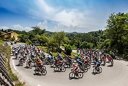Peloton near Ljubljana during 1st Stage of 26th Tour of Slovenia 2019 cycling race between Ljubljana and Rogaska Slatina (171 km), on June 19, 2019 in  Slovenia. Photo by Vid Ponikvar / Sportida
