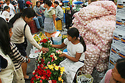 Roses and onions for sale Cuernavaca municipal market, Mexico. (Supporting image from the project Hungry Planet: What the World Eats.)