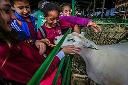 E. E. E. F. Canada, de Viamão, visita a 38ª Expointer, que ocorre entre 29 de agosto e 06 de setembro de 2015 no Parque de Exposições Assis Brasil, em Esteio. FOTO: André Feltes/ Agência Preview