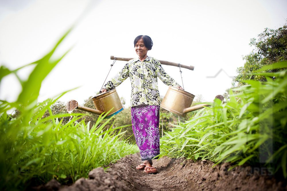 Farmer watering land in Svay Rieng Province, Cambodia, Southeast Asia