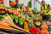 Medwyns of Anglesey vegetable display in the Grand Pavillion - Press preview day at The RHS Chelsea Flower Show.