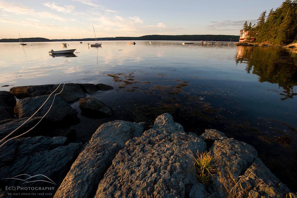 The shoreline on Little Deer Isle in Maine.