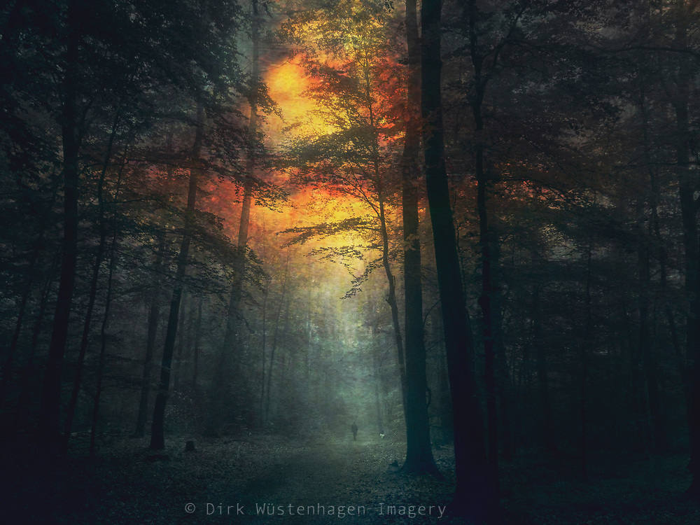 Man walking on a forest path in twilight - manipulated photograph
