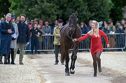 Price Jonelle, (NZL), The Deputy<br /> First Horse Inspection - Mitsubishi Motors Badminton Horse Trials <br /> Badminton 2015