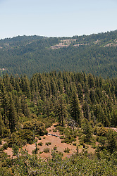 Stanislaus National Forest near Pinecrest, California, USA.  Photo copyright Lee Foster.  Photo # california121491