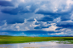 August 9, 2017 - Inner Mongolia, Inner Mongolia, China - Inner Mongolia, CHINA-August 8 2017: (EDITORIAL USE ONLY. CHINA OUT) Scenery of Wulagai Wetland in north China's Inner Mongolia Autonomous Region. (Credit Image: © SIPA Asia via ZUMA Wire)