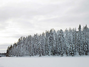 Snowy Winter landscape of the forest and frozen lake of Immeljarvi near Levi in Finnish Lapland on 14th February 2018.