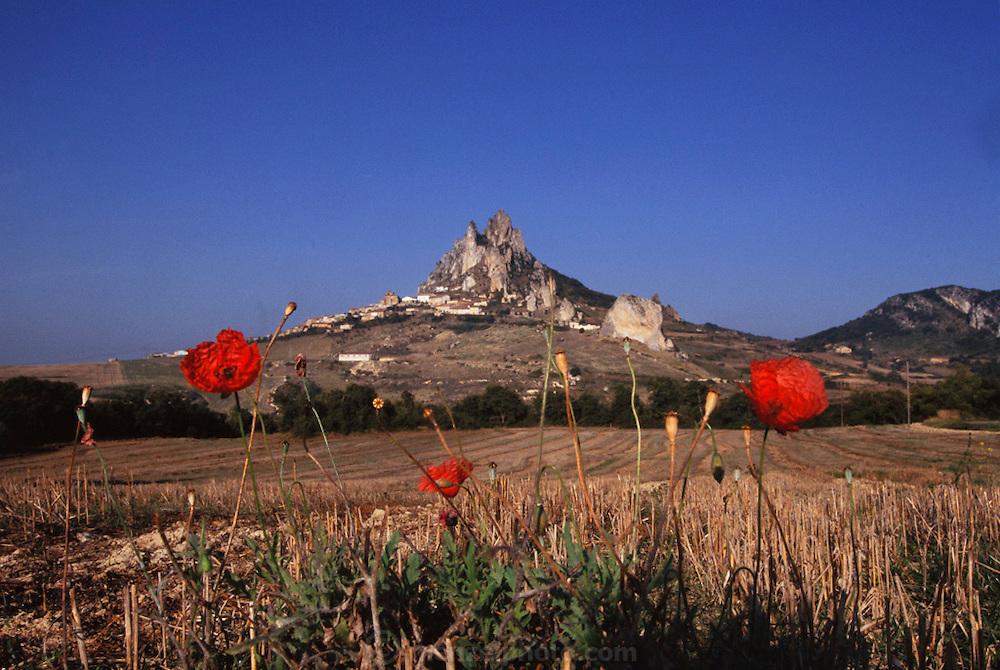 Cellorigo, Rioja, Spain.