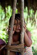 Young indigenous Arara girl looking through some branches. A third of Altamira in the state of Para, Brazil will be flooded to make way for the Belo Monte dam, nearly all the people affected are the poorest in society or indigenous communities that will have nowhere to go if they were made homeless, and the Government payoff for their properties is low therefore making it difficult to find new accomodation. At present, the Arara land is protected from development, sale or new residents as it has been their ancestral land for hundreds of years, this is now one of the key areas under threat