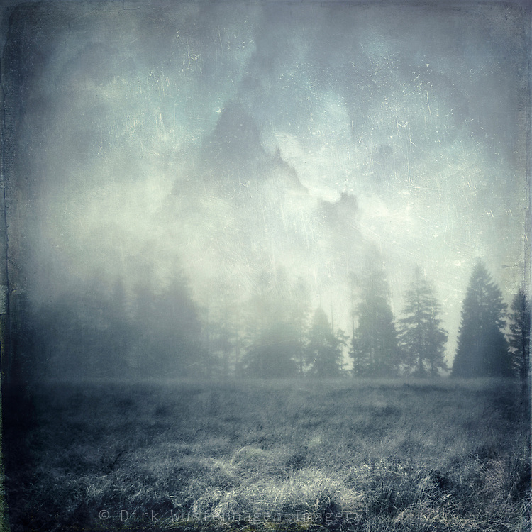 Fog mood in the High Fens<br /> textured Photography<br /> Prints & more: <br /> http://society6.com/DirkWuestenhagenImagery/guardians-cLj_Print