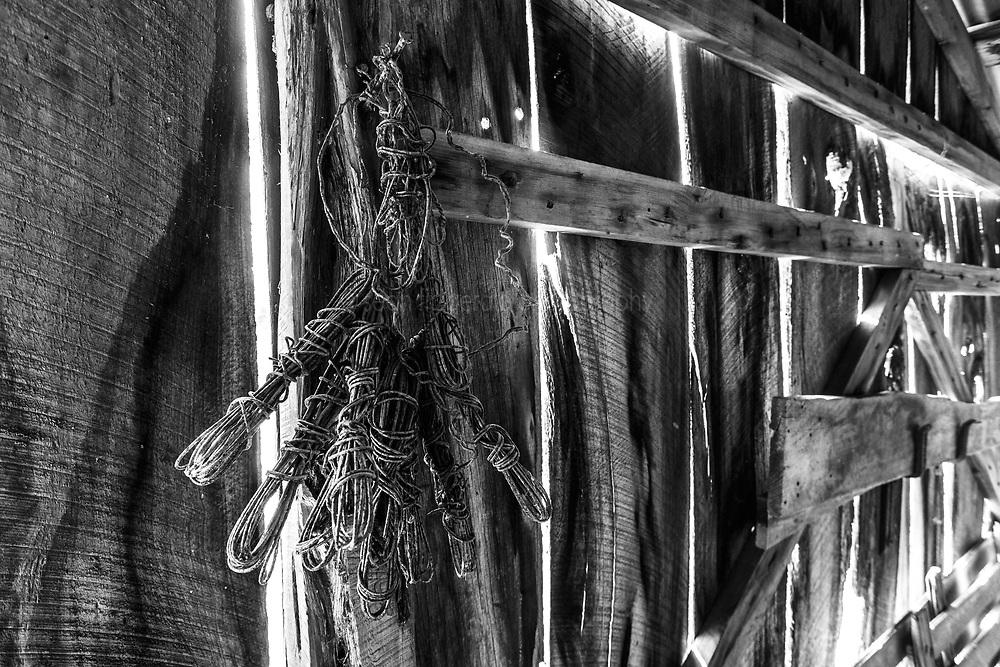 Weathered barn, Muleshoe Historic Farm, Hill Country, Comfort, Texas, USA.