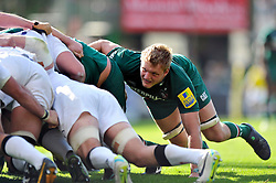 Leicester Tigers flanker Jamie Gibson in action at a scrum - Photo mandatory by-line: Patrick Khachfe/JMP - Tel: Mobile: 07966 386802 - 21/09/2013 - SPORT - RUGBY UNION - Welford Road Stadium - Leicester Tigers v Newcastle Falcons - Aviva Premiership.