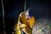 """02 SEPTEMBER 2014 - CHUM SAENG, RAYONG, THAILAND: LEK, a laborer on a rubber plantation in Rayong province of Thailand, """"taps"""" a rubber tree to collect rubber. Trees are tapped during the night. Lek and his wife used to work together on the farm but she was laid off when prices plunged and now works in a food stall in town. Thailand is the leading rubber exporter in the world. In the last two years, the price paid to rubber farmers has plunged from approximately 190 Baht per kilo (about $6.10 US) to 52 Baht per kilo (about $1.60 US). It costs about 65 Baht per kilo to produce rubber ($2.05 US). A rubber farmer in southern Thailand committed suicide over the weekend, allegedly because the low prices meant he couldn't provide for his family. Other rubber farmers have taken jobs in the construction trade or in Bangkok to provide for their families during the slump.    PHOTO BY JACK KURTZ"""